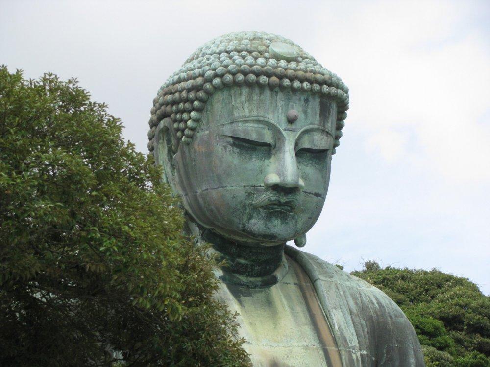 Calm Daibutsu