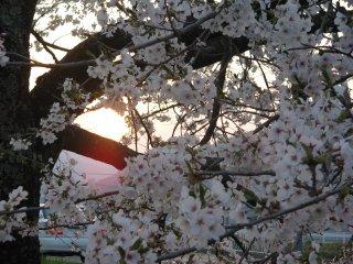 Sunset in Tono