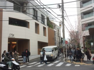 Những con phố ở Daikanyama rất hiện đại với lác đác bóng dàng những bông hoa anh đào cuối tháng hai