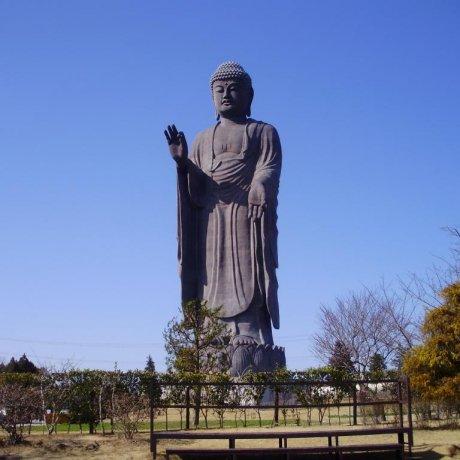 Visiting the Ushiku Daibutsu (Great Buddha)