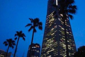 Landmark Tower at night