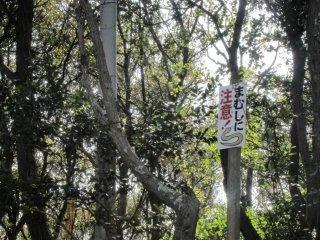 """Tấm biển kia ghi """"Cẩn thận với mamushi"""". Chúng là nhữn con rắn độc xuất hiện vào những tháng ấm áp. Cẩn thận khi đi trên đảo"""