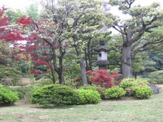 A stone lantern is always the center of a Japanese garden