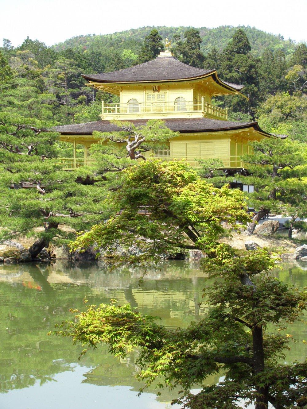 Pemandangan menarik Kuil Kinkakuji