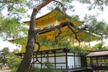 The Spirit of Kyoto