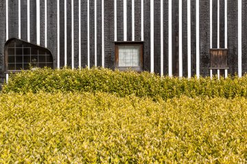 Solid yellow-green groundcover complements the charcoal siding and stripes of Ramune Onsen