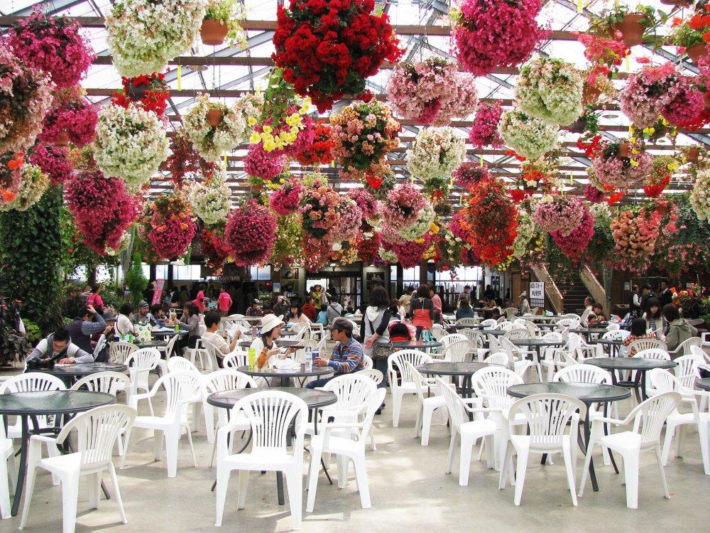 Une décoration florale captivante