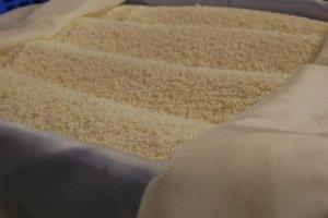 米にこうじ菌を繁殖させたもの。鍋店酒造にて。