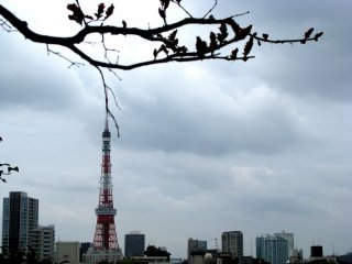 Tokyo Tower in sight