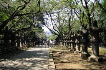 Tokyo Walks: Ueno Park