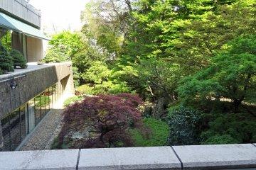 สวนญี่ปุ่นมองจากในโรงแรม