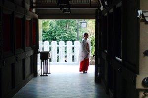 A shrine maiden