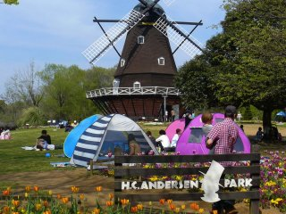Tulips and a Dutch windmill