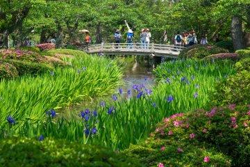 Kenroku-en, the beautiful park in central Kanazawa.