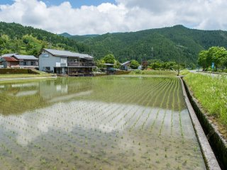 Chikatsuyu, sur le Kumano Kodô.