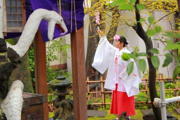Shinagawa Culture Event
