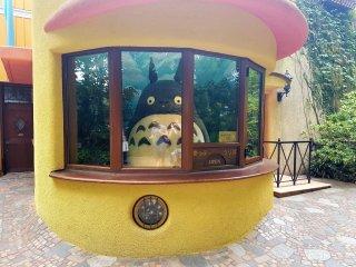 และแน่นอนคุณจะได้พบกับโทะโทะโระ (Totoro)