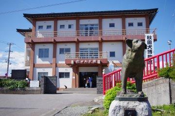 Akita Inu Museum