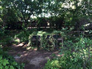 のんびりとした庭でおしゃべりをしながらくつろぐ