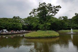 สวนโยะโยะกิ เปรียบดังสวนลุมพินีของญี่ปุ่น ที่มีผู้คนทุกเพศทุกวัย มาทำกิจกรรมต่างๆ หลายรูปแบบ
