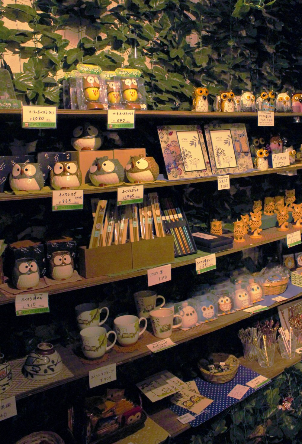Owl Souvenir Shop