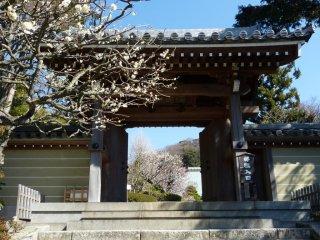 죠묘지 정문