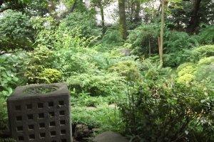 The garden where Yokoyama would relax