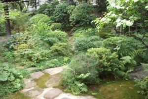 Yokoyama doubtless strolled on this path through the garden