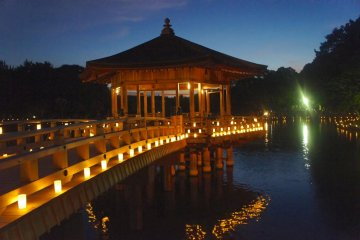 Travel back in history while attending this beautiful illumination