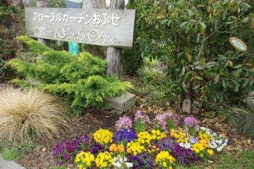 Цветочный сад в Обусей