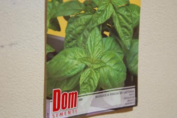 Basil seed package brought back from Italy