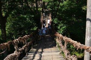 渡り終えた向こう岸から橋を臨む