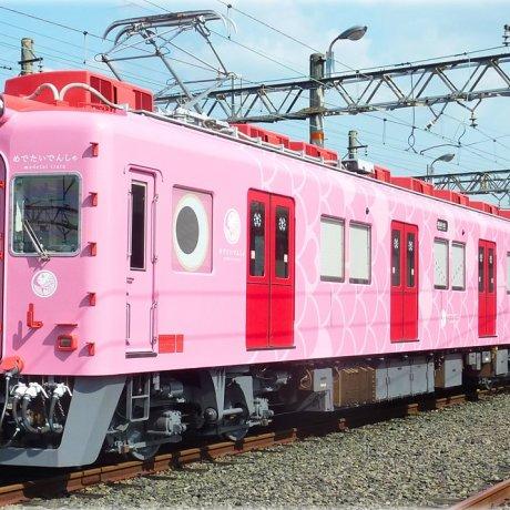 แนะนำ Medetai Train แห่ง Wakayama
