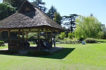 Plenty of picnic spots
