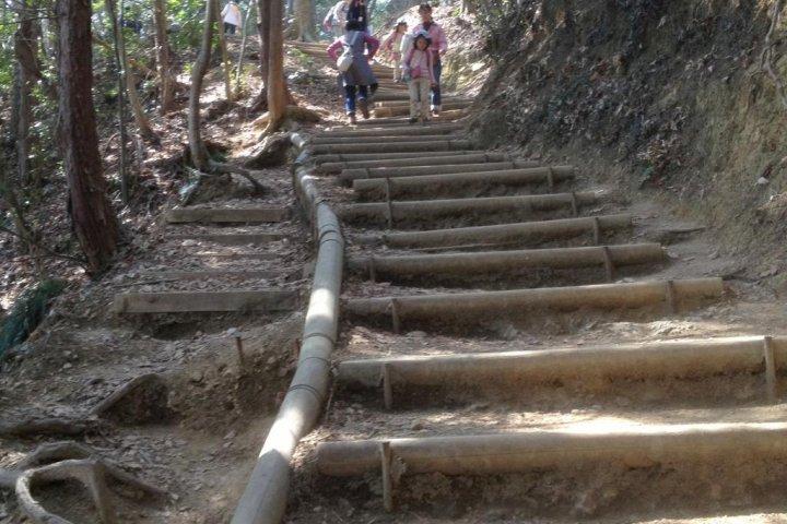 Day Trekking at Mt. Takao