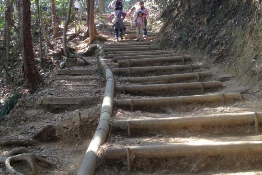Inariyama Trail - Steps, Steps, Steps
