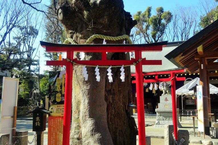 Nitta-jinja Shrine