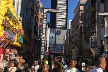 Godzilla spotted