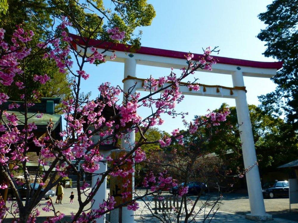 Lối vào của Kamakura-gu