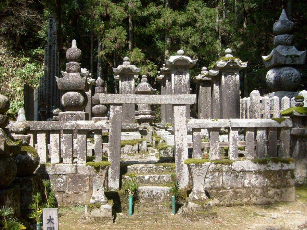묘지 주변 나무들과 나뭇잎들