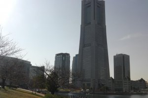 Towering over the other buildings