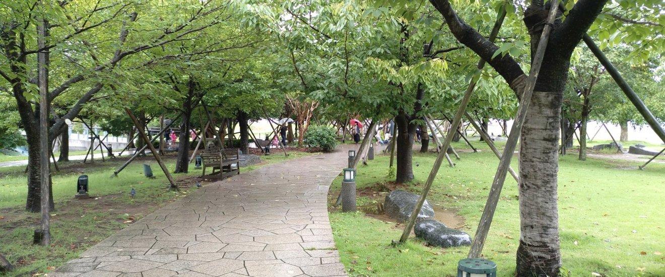 Caminho pedonal com a tranquilidade de ser uma zona sem carros e coberta de sombra