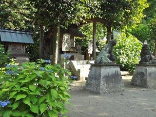 The shrine grounds
