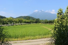Agricultural Adventures in Hirosaki