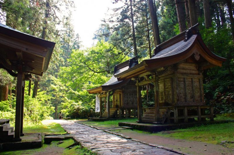 Haguro-san, representing birth, marks the start of your journey. Follow the path through a shady cedar forest.