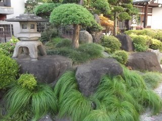 Taman yang kecil namun mempesona