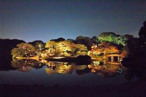 ทุกปีในช่วงฤดูใบไม้ร่วง สวนริคุงิเอนจะมีงานประดับไฟในยามราตรี