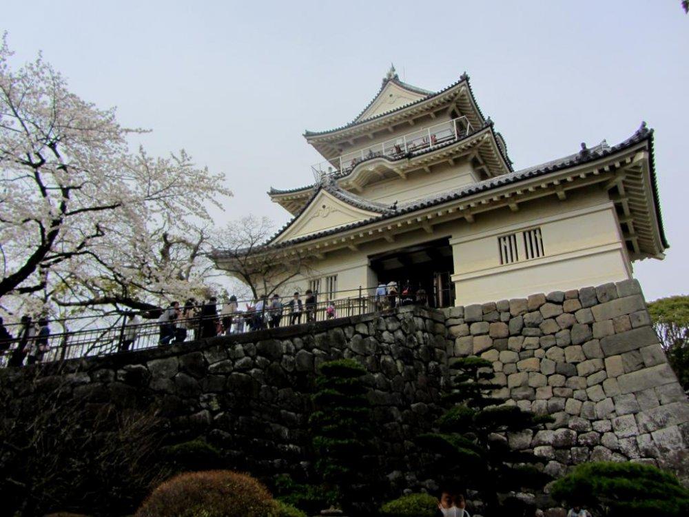 小田原城を見るためだけでも来る価値はある