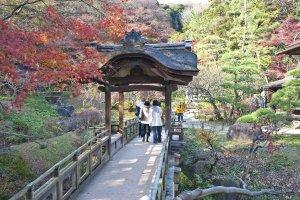 ภาพใบไม้สีสวยกับอาคารแบบญี่ปุ่นเป็นภาพที่งดงามประทับใจไม่ลืมเลือน