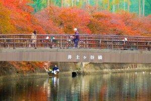 แม่น้ำโอโอะคะกะวะ (Ookagawa) แห่งโยโกฮะมะ (Yokohama) ในฤดูใบไม้ร่วง